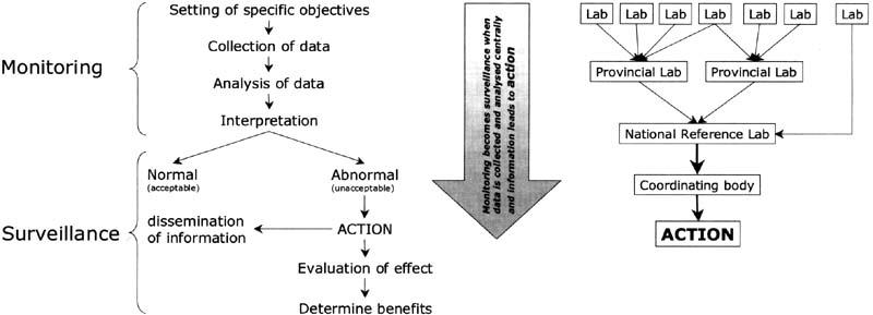 FOOD CONTAMINATION MONITORING AND FOOD-BORNE DISEASE