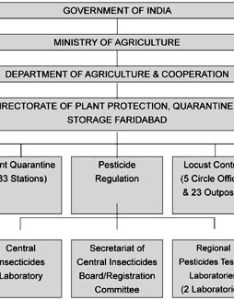 organizational chart of indian plant quarantine structure also identification risks and management invasive alien species rh fao