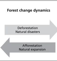 forest change processes [ 1930 x 675 Pixel ]