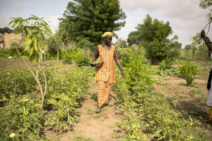 Photo: ©Benedicte Kurzen/NOOR for FAO / FAO