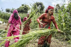 Photo: ©Chris Steele-Perkins/Magnum Photos for FAO