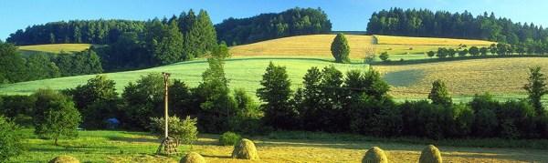 FAO Country ProfilesCzech Republic