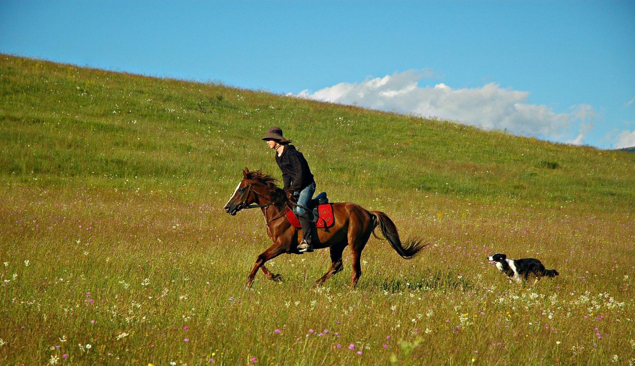 Horse Riding Wallpaper Hd Kupres Farm Riding Holiday In Bosnia And Herzegovina Far