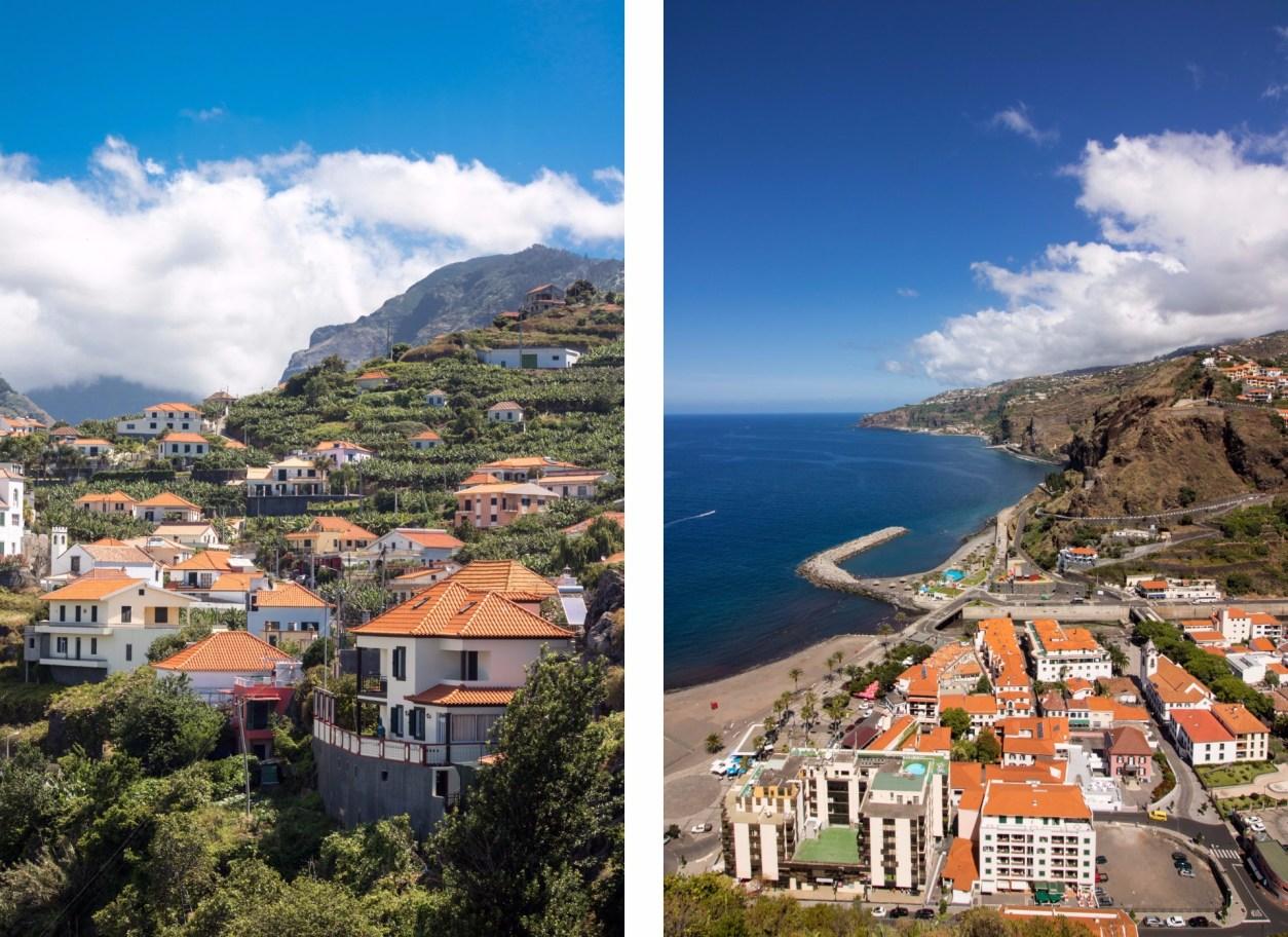 amazing-views-of-orange-roofed-houses-surrounded-by-trees-by-the-coast-in-ribeira-brava