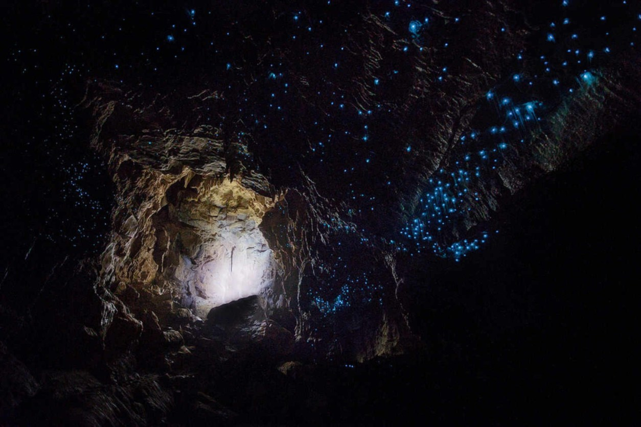 Waitomo Glowworm Caves. 10 Awesome Things To Do In North Island New Zealand. Places to visit in North Island New Zealand. What to See in North Island New Zealand. Travel Blog. Tours. Itinerary. Skyjump Auckland. Sky Tower. Waiheke Island. Hobbiton. Skydiving over Lake Taupo. Geothermal activity. OGO zorbing Rotorua. Maori cultural experience. Jet boat Huka Falls. Tongariro Alpine Crossing. Glowworms Waitomo Caves. Wellington. Click through to read more...
