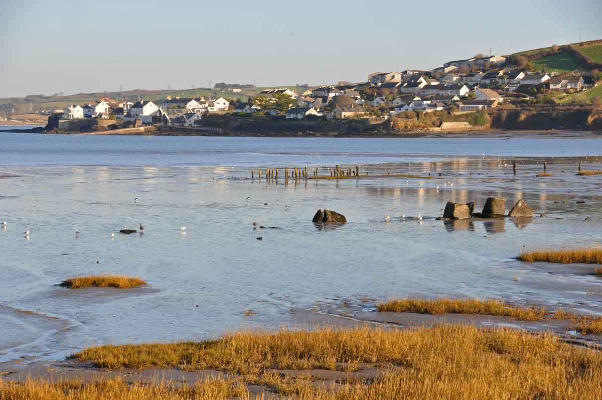 sea-and-town-of-appledore-at-sunset