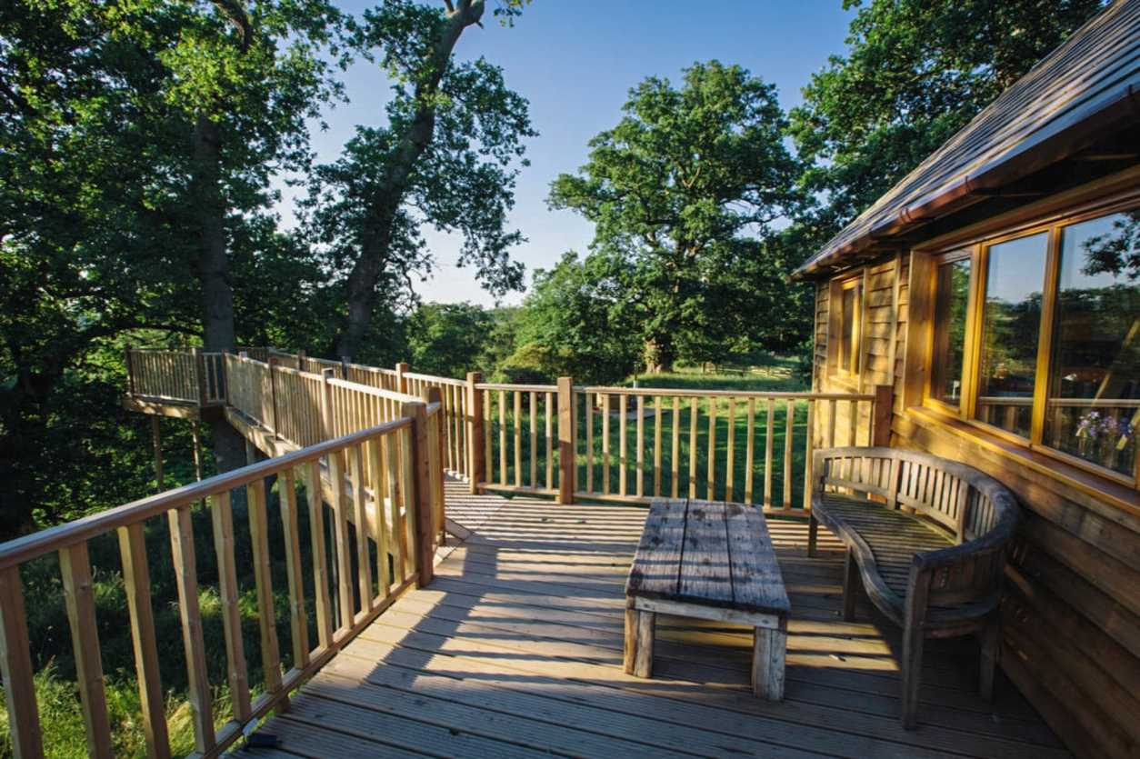bench-and-table-sat-on-walkway-in-woods-leading-to-treehouse-netherby-cumbria