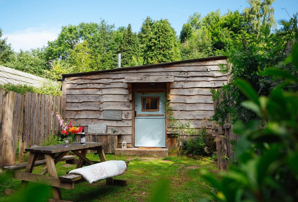 rustic-cabin-with-blue-door-hidden-among-greenery-brambling-cross-cabin
