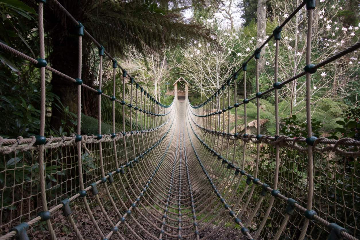 the-lost-gardens-of-heligan-rope-bridge-cornwall-hidden-gems