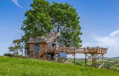 treehouse-in-field-with-rolling-hills-in-background-squirrels-nest-llandrindod-wells-powys-glamping-with-hot-tub-wales