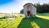 pine-shepherds-hut-in-field-on-sunny-day-at-rock-farm-slane-glamping-with-hot-tub-ireland