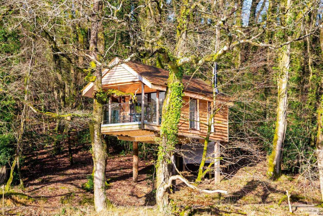 small-treehouse-on-stilts-yeworthy-eco-treehouse-in-elworthy-best-airbnbs-in-cornwall
