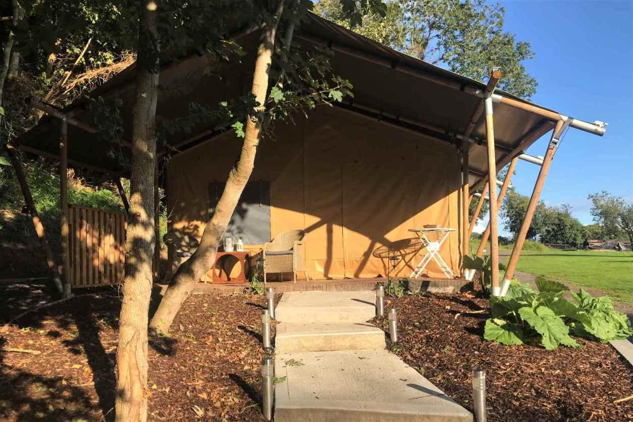 steps-leading-up-to-slane-safari-tent-on-edge-of-field