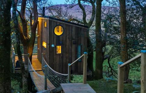 the-birdbox-treehouse-in-the-trees-lit-up-at-night-glamping-donegal