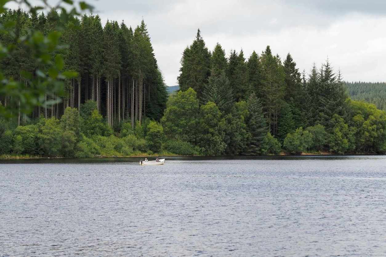 boat-in-lake-by-trees-on-kielder-water-best-places-to-visit-in-northumberland