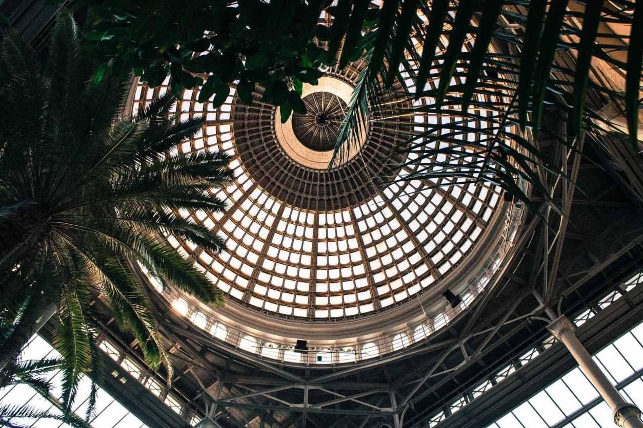 dome-and-palm-trees-inside-ny-carlsberg-glyptotek-museum-3-days-in-copenhagen-itinerary