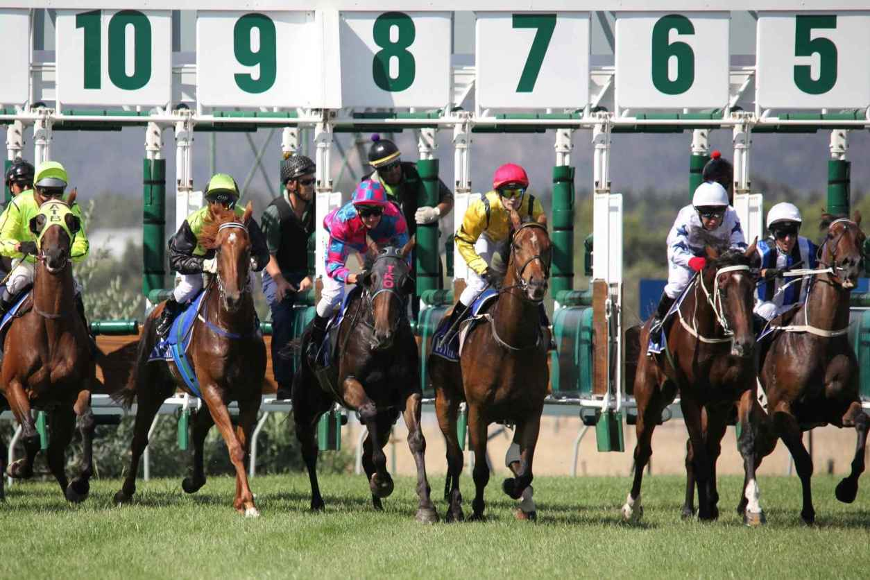 jockeys-starting-horse-race-at-ascot