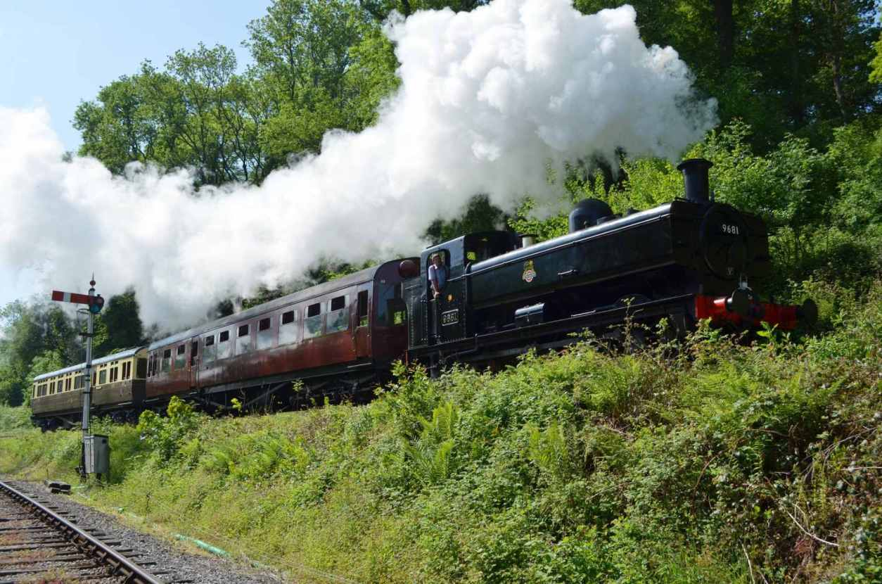man-looking-out-of-steam-train-running-through-countryside-at-dean-forest-railway