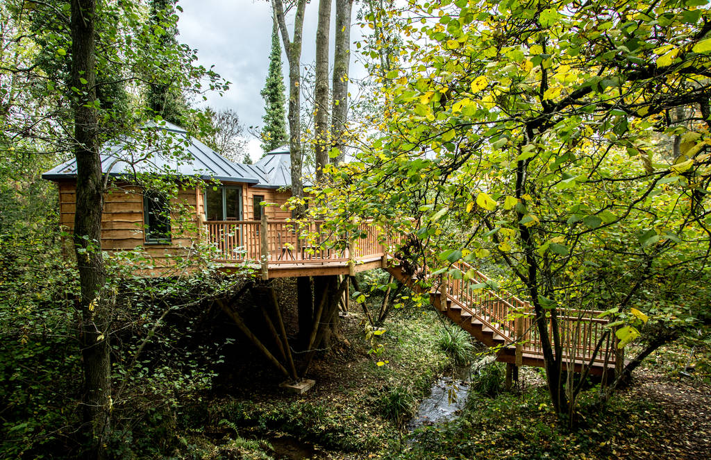 staircase-leading-up-to-the-bower-treehouse-in-woodland-glamping-somerset