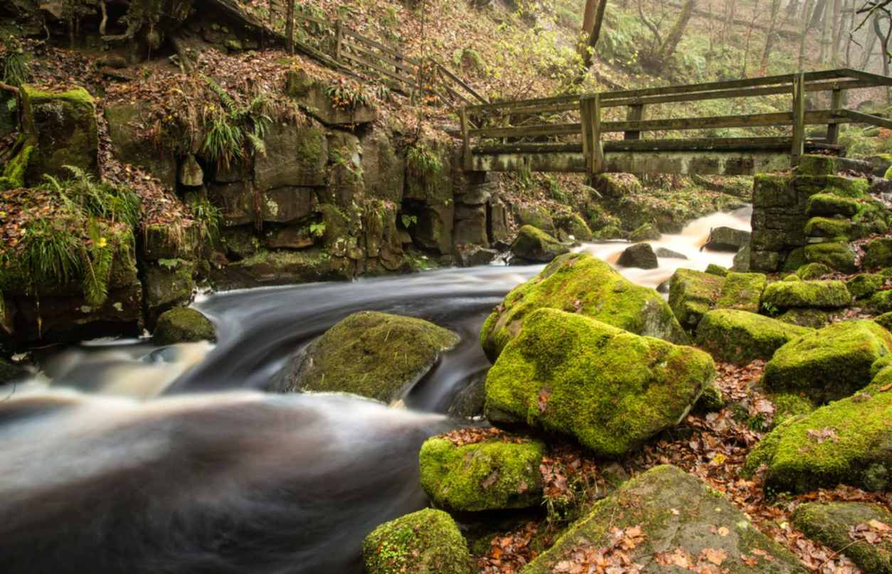stream-rushing-under-small-wooden-bridge-in-forest-padley-gorge
