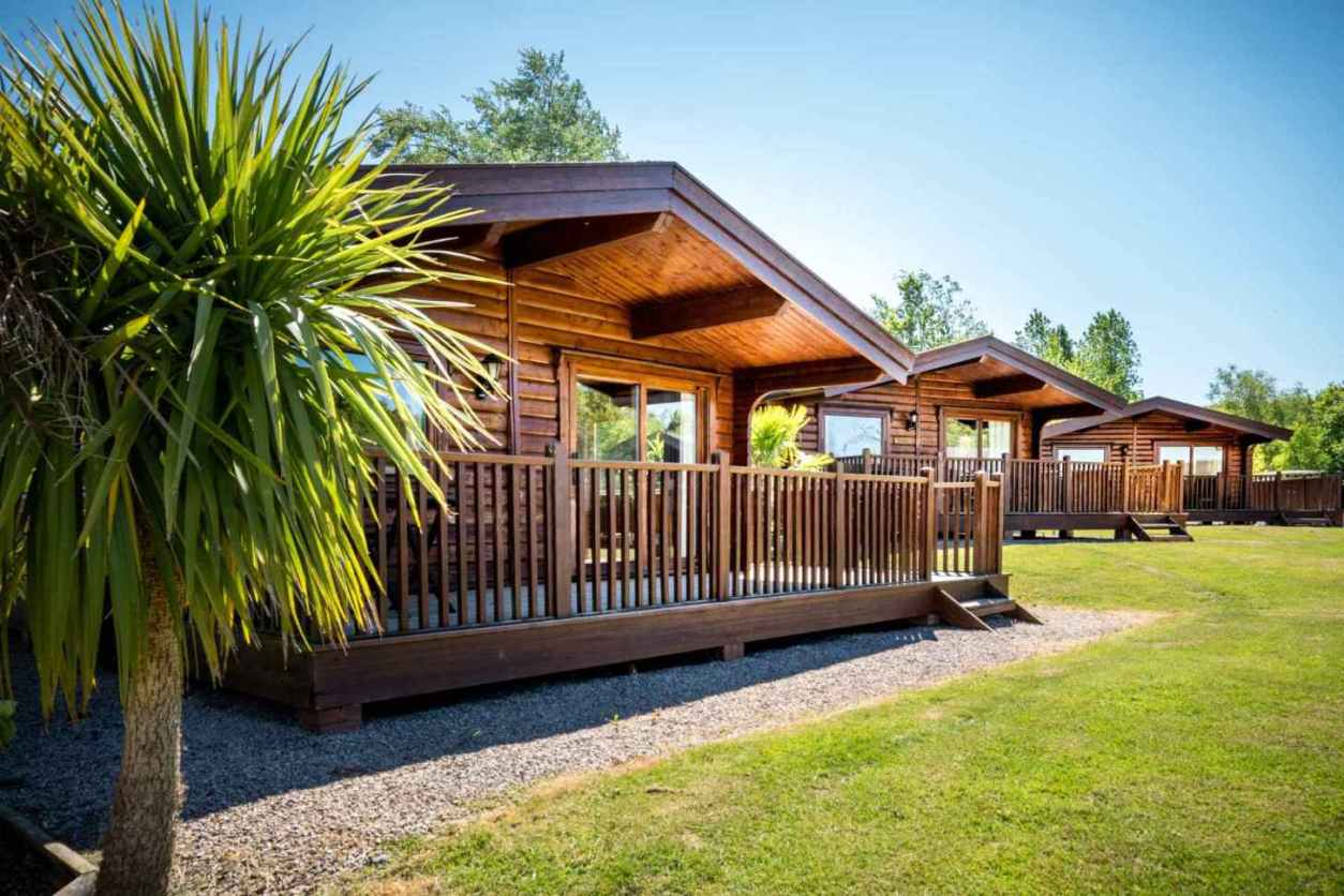 fingle-glen-lodges-in-field-with-palm-trees