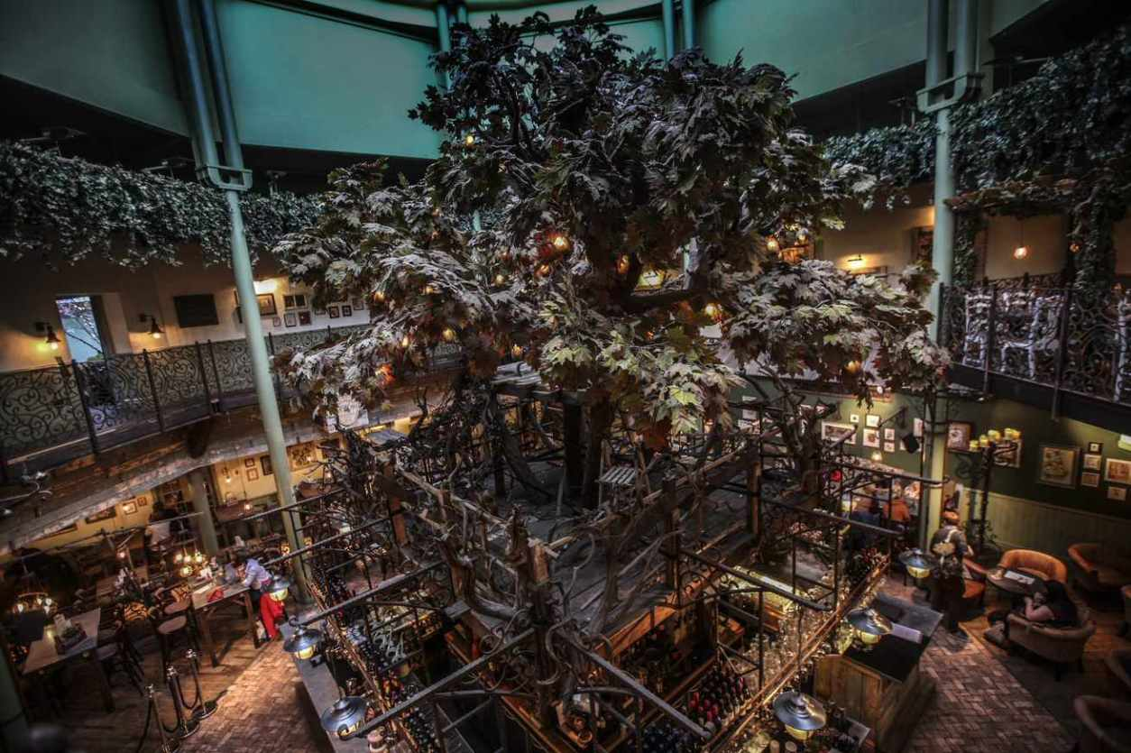 large-tree-inside-the-botanist-bar-in-newcastle