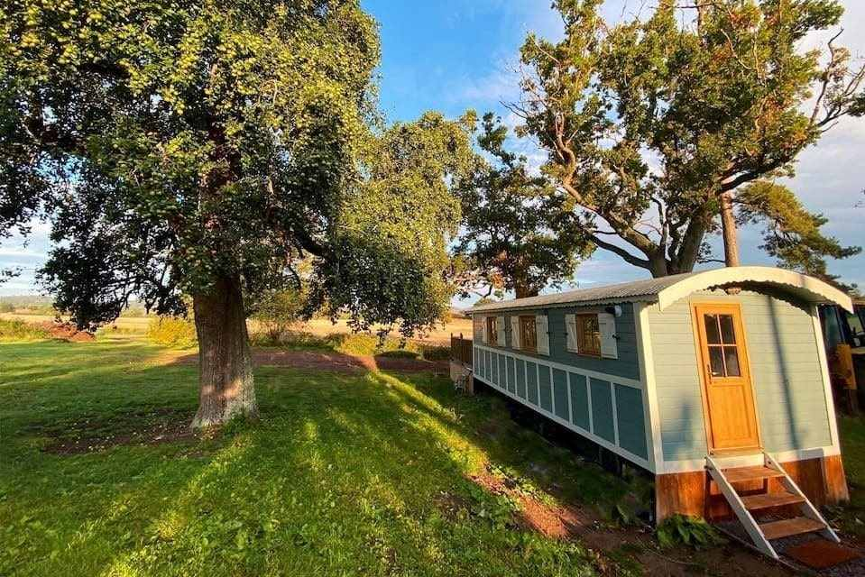long-mint-spacious-shepherds-hut-in-field