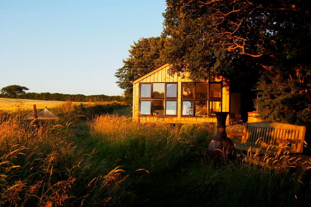 quiet-of-stars-cabin-by-trees-in-field-at-sunset