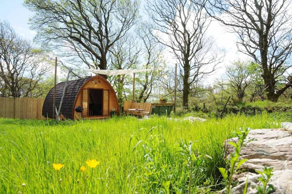 south-kerry-glamping-pod-in-grassy-field-on-sunny-day-glamping-kerry