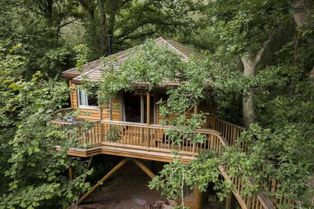 tinkers-treehouse-on-stilts-in-woodland-at-downash-wood-glamping-sussex
