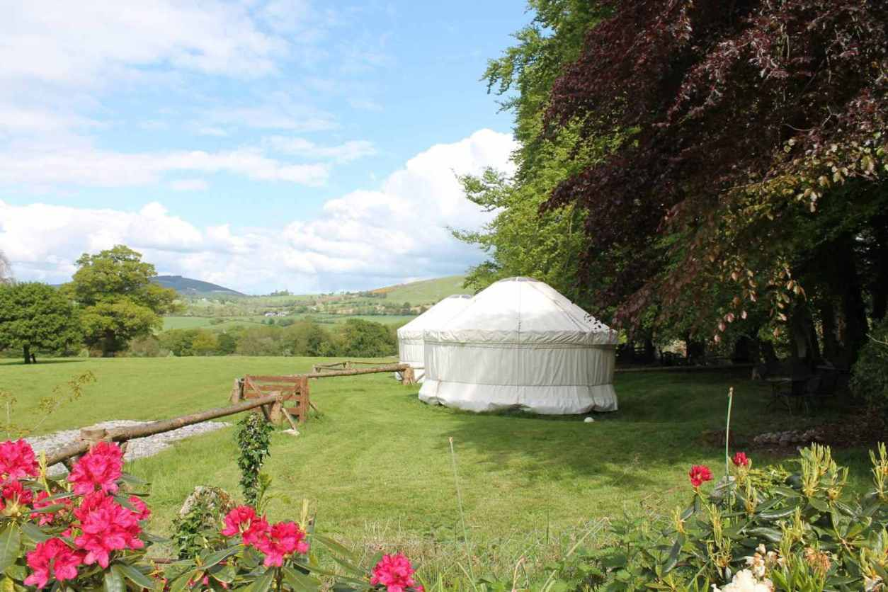 two-white-yurts-in-field-at-the-old-forge-glamping-yurts-glamping-wicklow