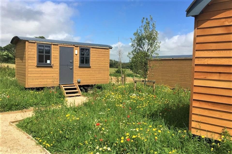 wildflower-meadow-shepherds-hut-in-field-glamping-wexford