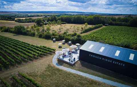 aerial-view-of-crouch-ridge-estate-vineyard-places-to-visit-in-essex