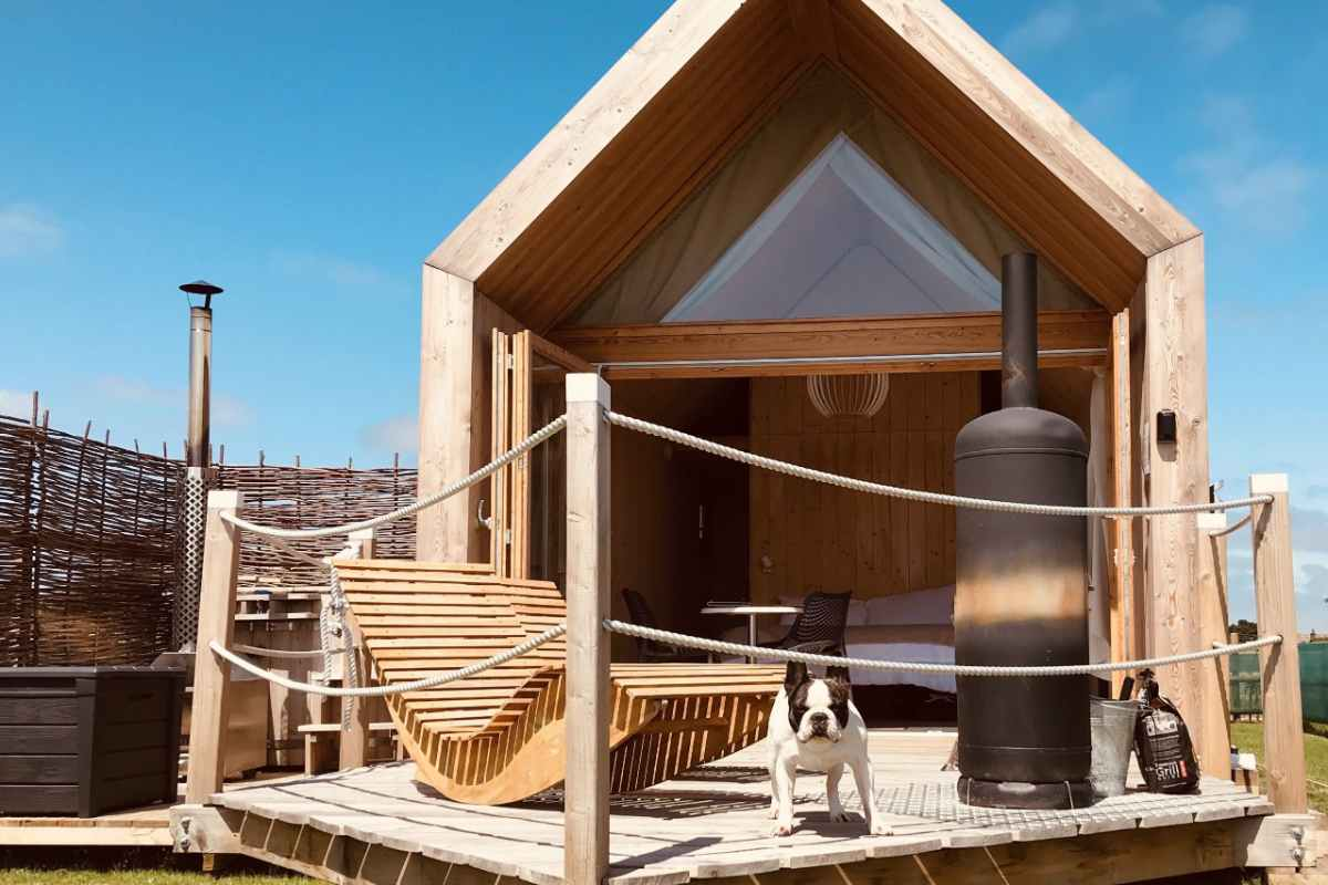 dog-on-decking-of-lushna-suite-at-lee-wick-farm