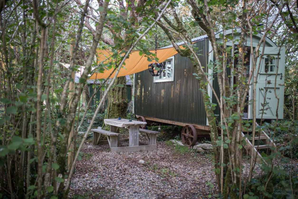 hazelwood-hideaway-shepherds-hut-in-forest-glamping-galway