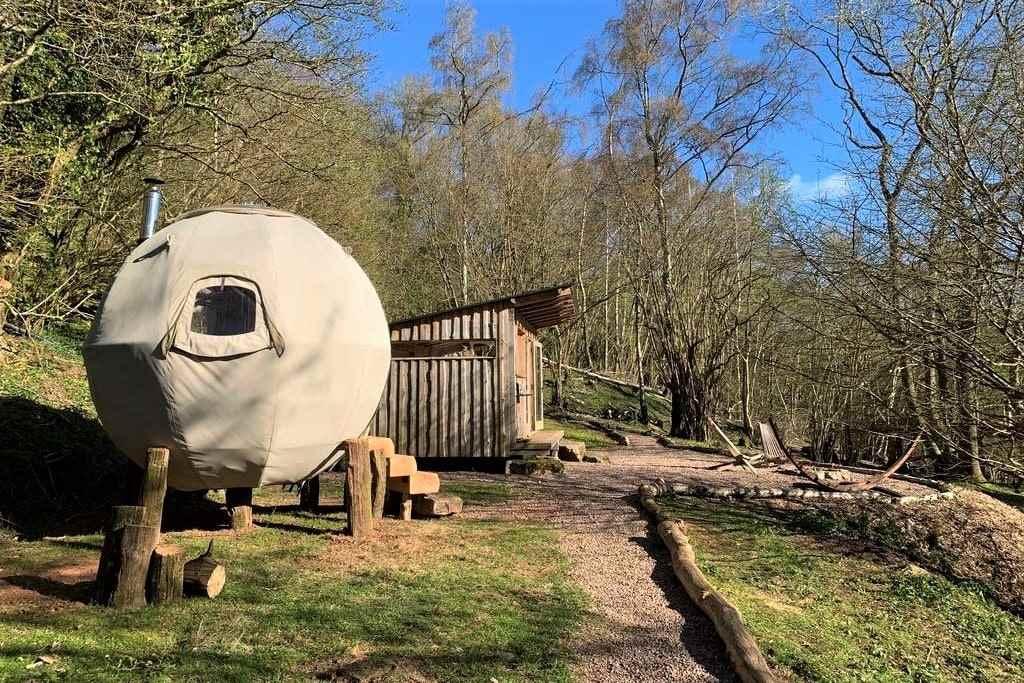 oak-apple-tree-tent-and-hut-amid-trees-on-sunny-day