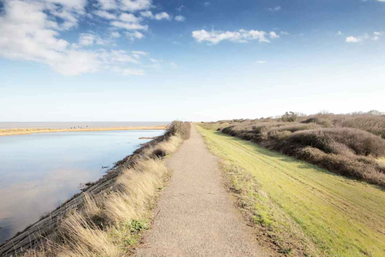 view-from-walton-on-the-naze-over-water-and-grasslandplaces-to-visit-in-essex