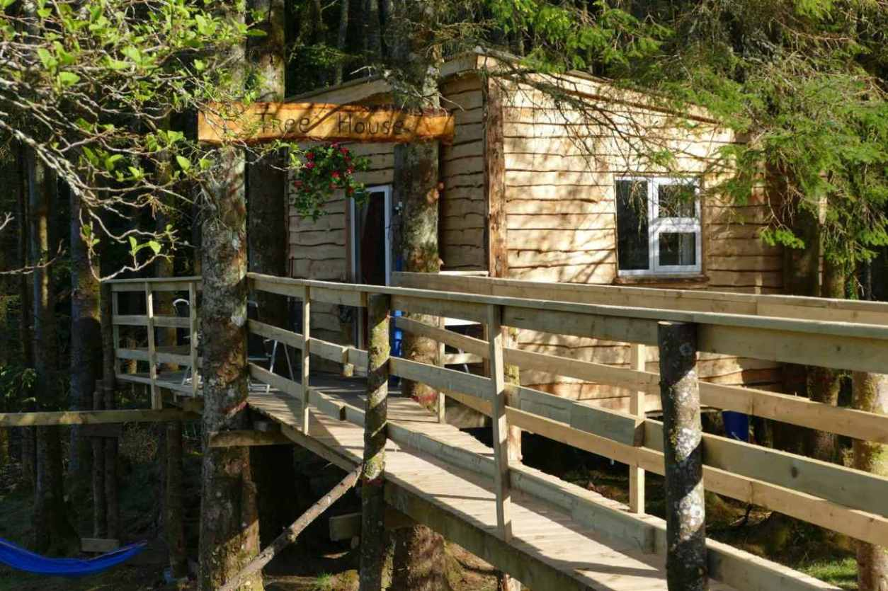 wooden-bridge-leading-up-to-ox-mountain-treehouse-in-forest-glamping-sligo