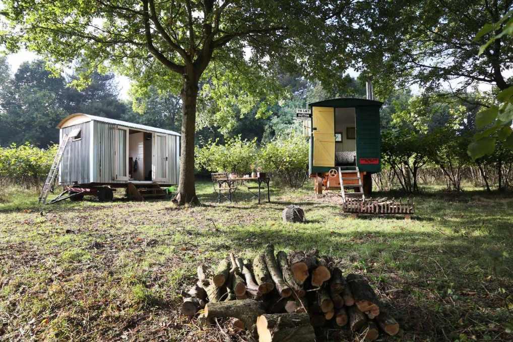the-nut-plat-retreat-huts-under-tree-in-field