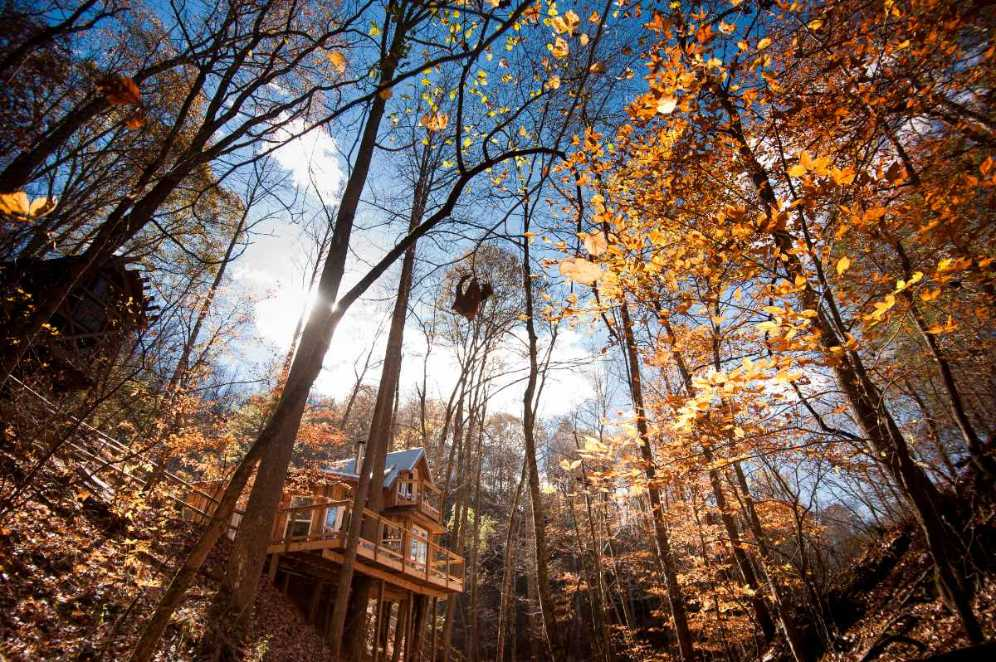 exeterior-of-sugar-creek-treehouse-in-forest