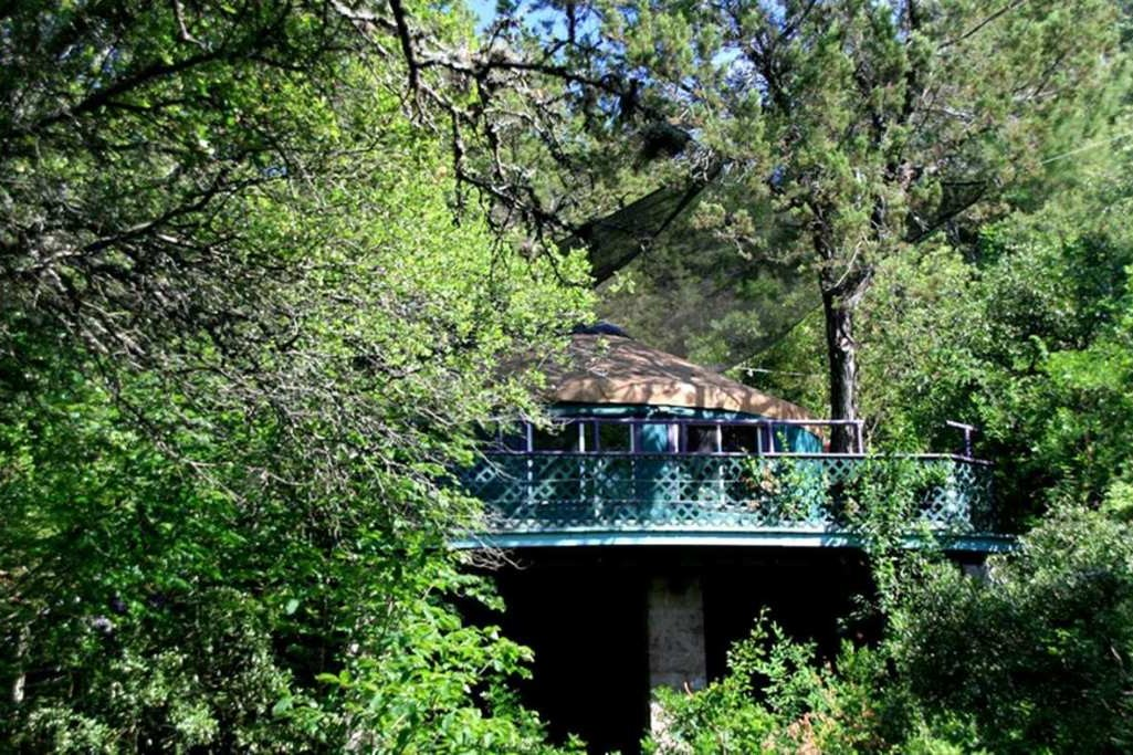 treehouse-yurt-suspended-in-trees
