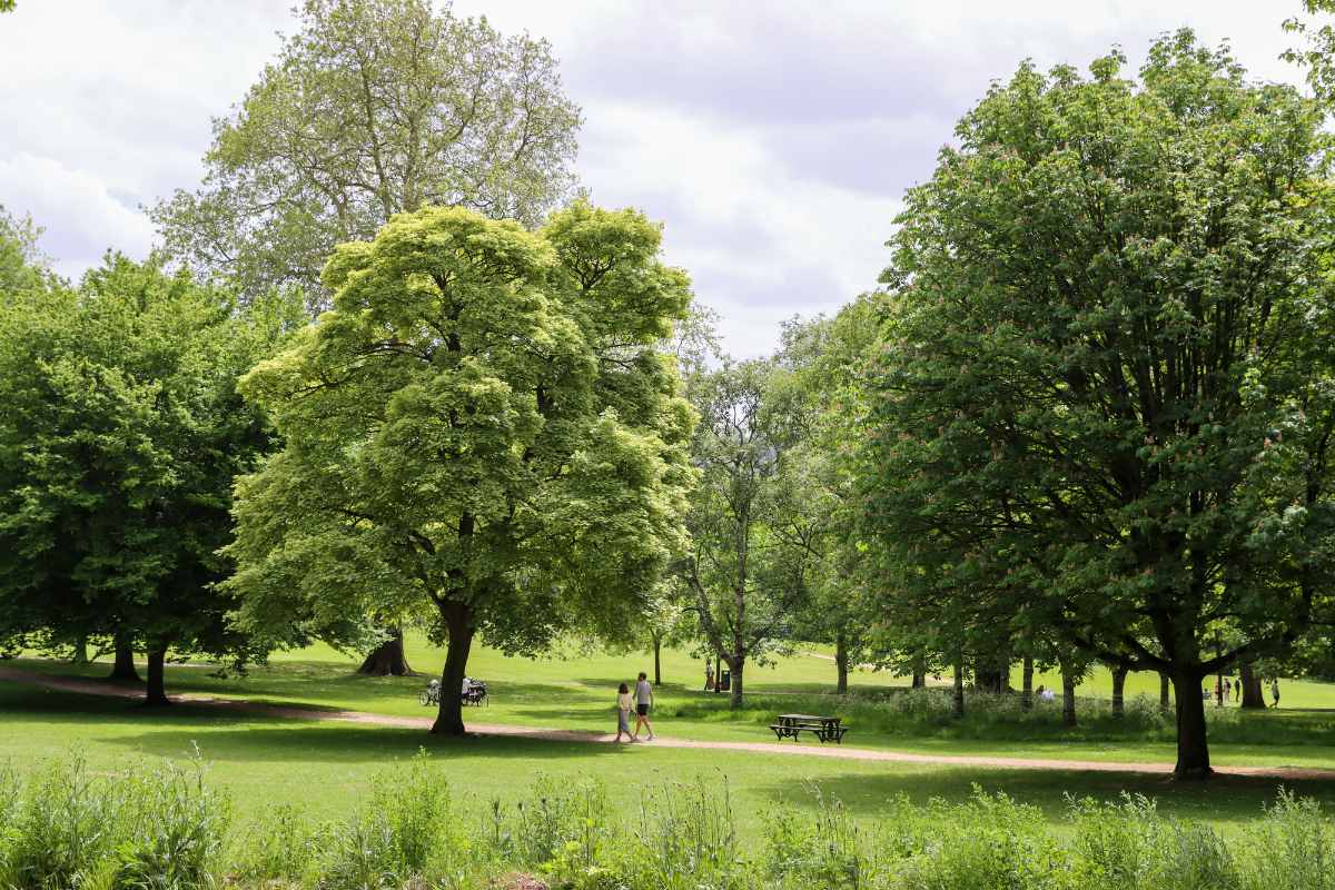 couple-strolling-through-royal-victoria-park