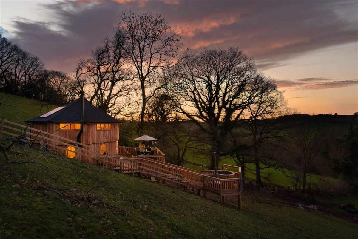 the-beehive-treehouse-at-sunset-at-holly-water-holidays