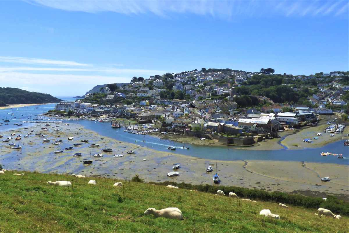 view-of-salcombe-from-snapes-point