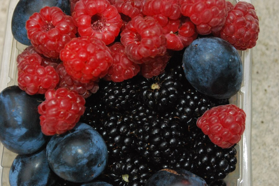 Ingredients for hedgerow preserve