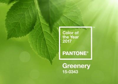 pantone-farbe-des-jahres-2017