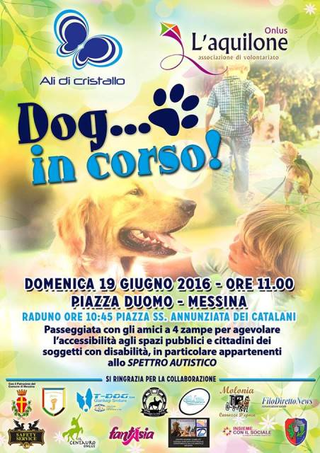 Dog in Corso a Messina
