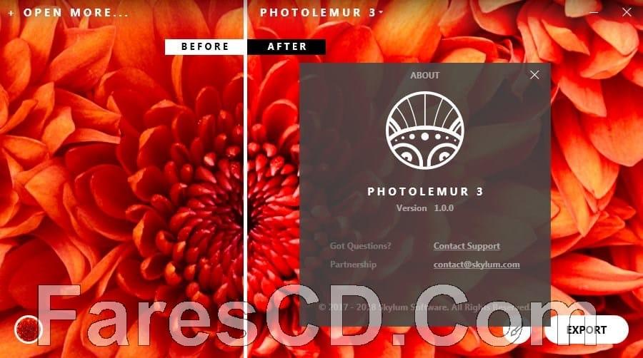 برنامج تحسين وتصفية الصور | Photolemur 3