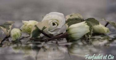 Fleur de mariage