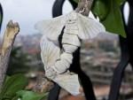 Bachi da seta – 15 bruchi piccoli